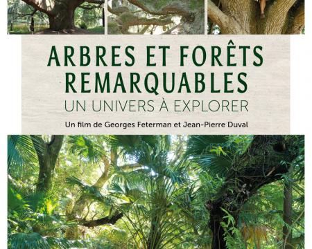 Projection du film Arbres et forêts remarquables à Saint-Étienne-de-Montluc (44)